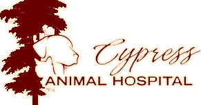 Veterinarian and Animal Hospital in Covina, CA